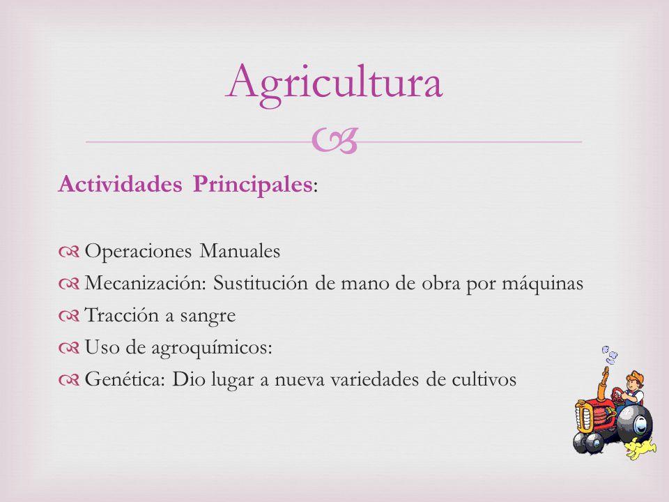Actividades Principales : Operaciones Manuales Mecanización: Sustitución de mano de obra por máquinas Tracción a sangre Uso de agroquímicos: Genética: Dio lugar a nueva variedades de cultivos Agricultura