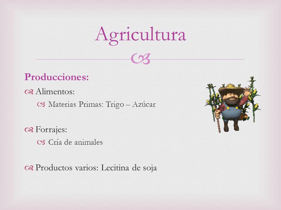 Producciones: Alimentos: Materias Primas: Trigo – Azúcar Forrajes: Cría de animales Productos varios: Lecitina de soja Agricultura