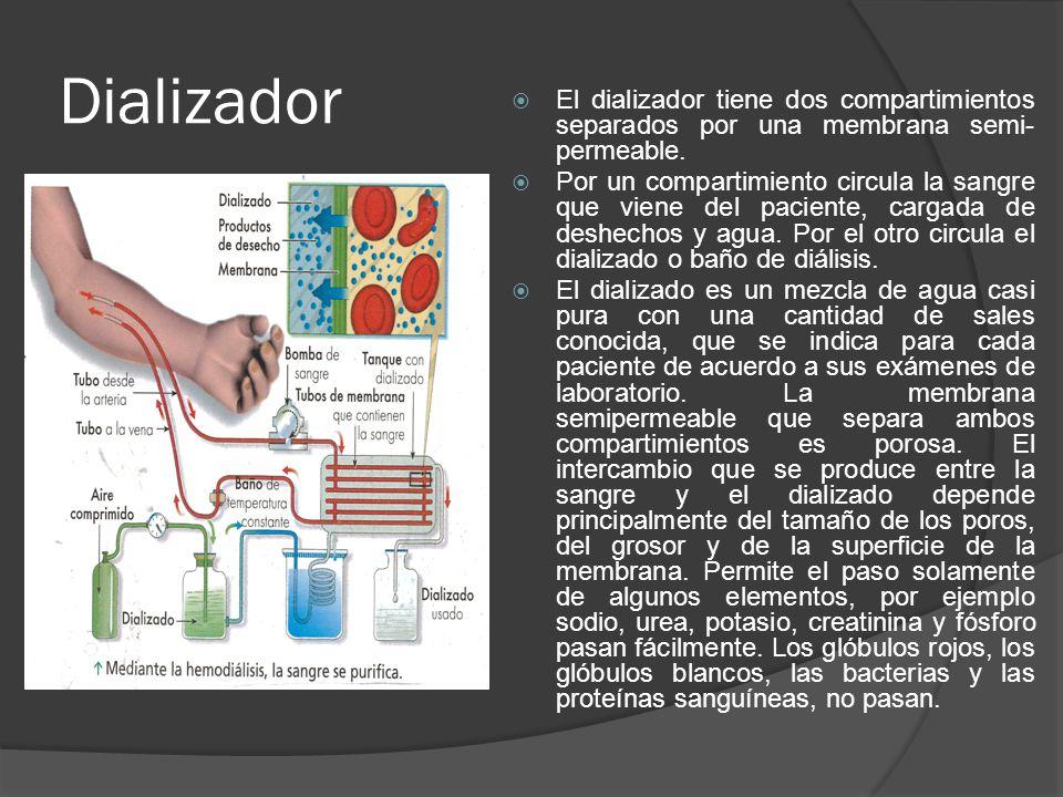 Dializador El dializador tiene dos compartimientos separados por una membrana semi- permeable. Por un compartimiento circula la sangre que viene del p