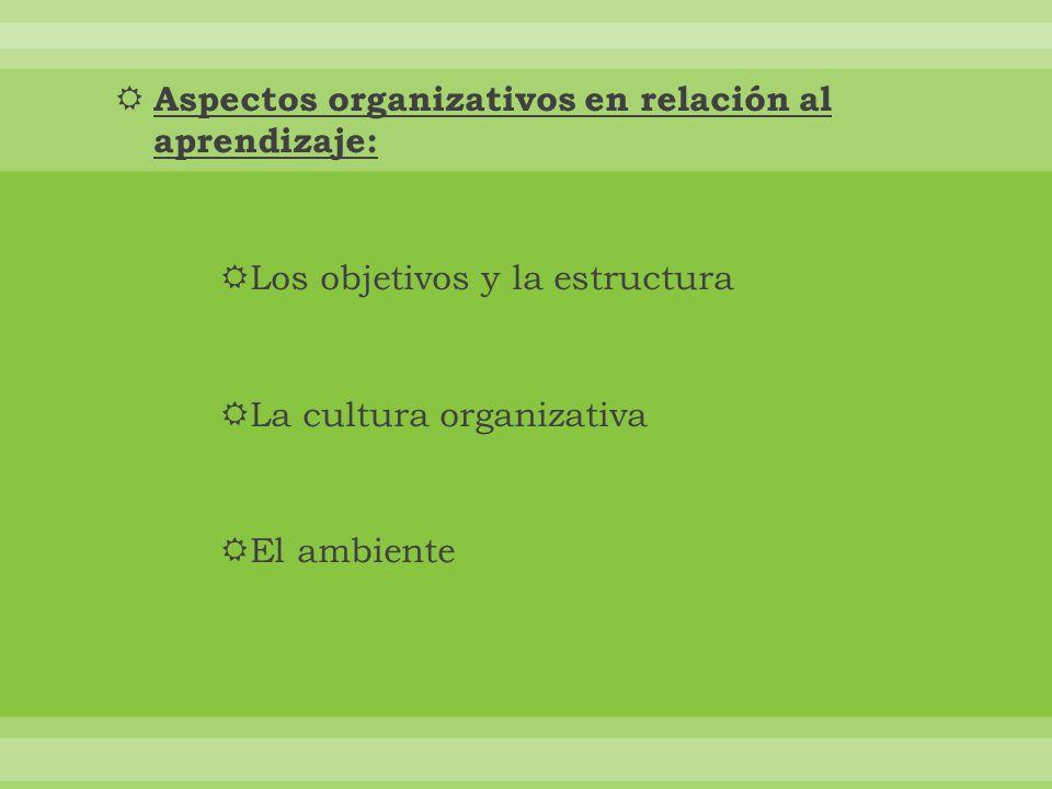 Aspectos organizativos en relación al aprendizaje: Los objetivos y la estructura La cultura organizativa El ambiente