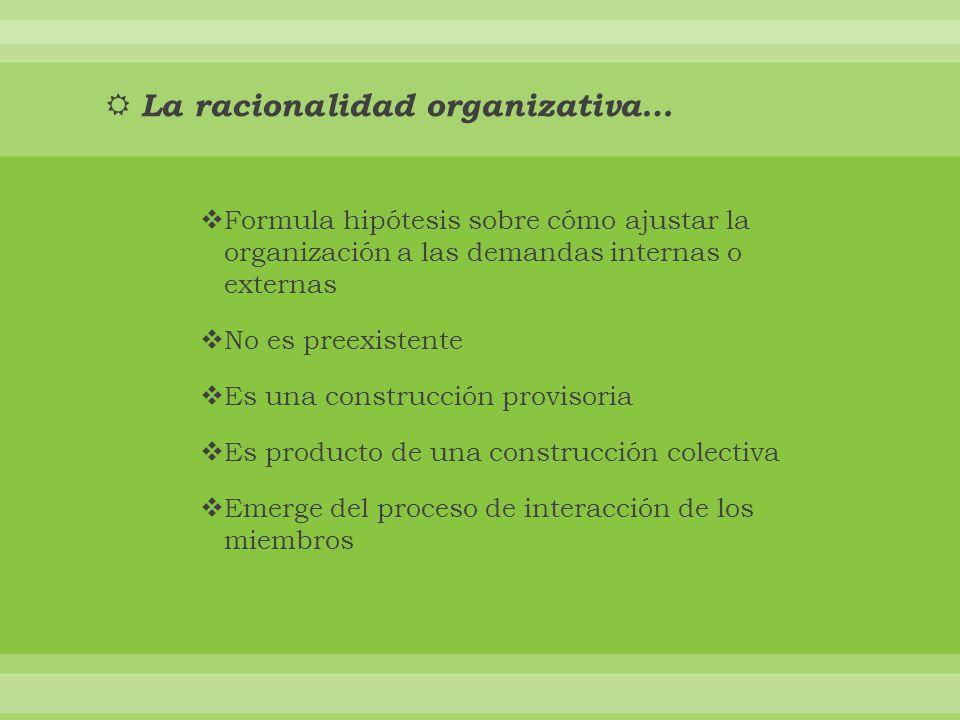La racionalidad organizativa… Formula hipótesis sobre cómo ajustar la organización a las demandas internas o externas No es preexistente Es una construcción provisoria Es producto de una construcción colectiva Emerge del proceso de interacción de los miembros