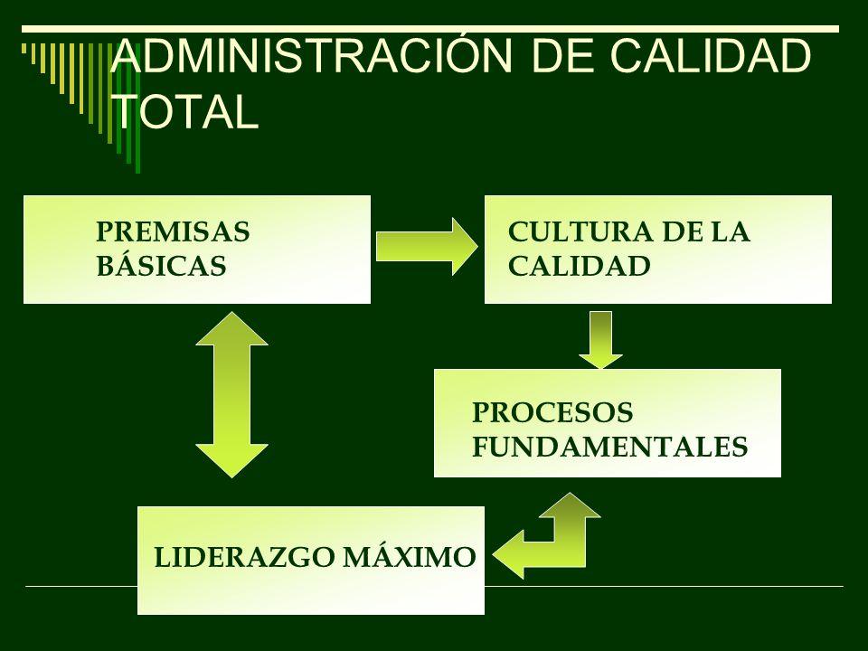 ALCANCE DE LA GESTIÓN DE CALIDAD TOTAL PRINCIPIOS PRÁCTICAS INFRAESTRUCTURA TÉCNICAS Y HERRAMIENTAS Enfoque al clienteMejora y aprendizaje continuo Participación y trabajo en equipo