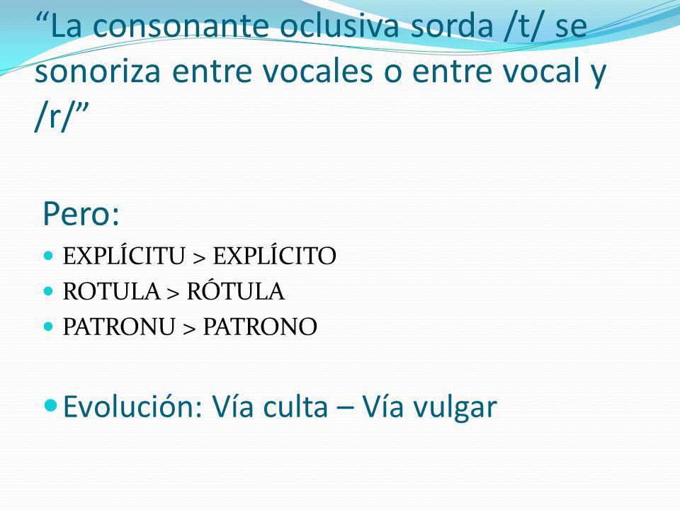 Pero: EXPLÍCITU > EXPLÍCITO ROTULA > RÓTULA PATRONU > PATRONO Evolución: Vía culta – Vía vulgar La consonante oclusiva sorda /t/ se sonoriza entre voc