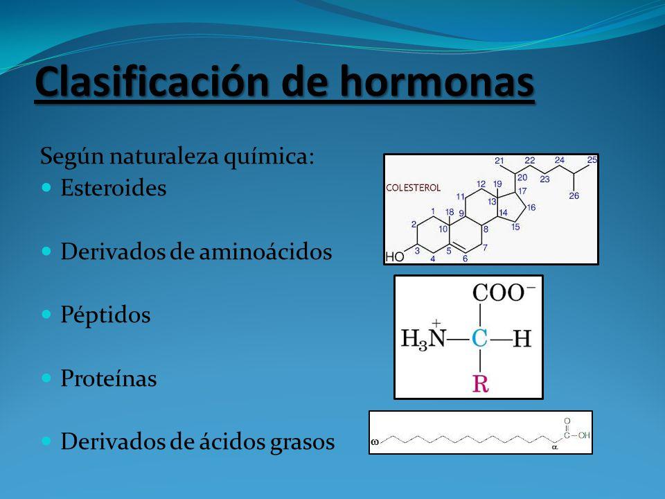 Según naturaleza química: Esteroides Derivados de aminoácidos Péptidos Proteínas Derivados de ácidos grasos Clasificación de hormonas
