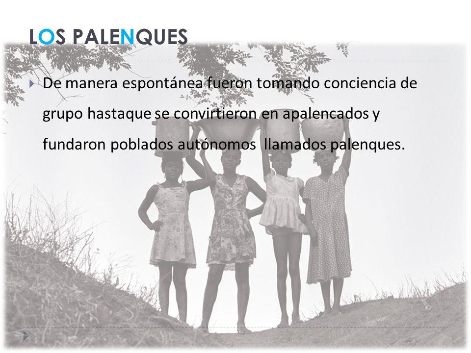 LOS PALENQUES De manera espontánea fueron tomando conciencia de grupo hastaque se convirtieron en apalencados y fundaron poblados autónomos llamados palenques.