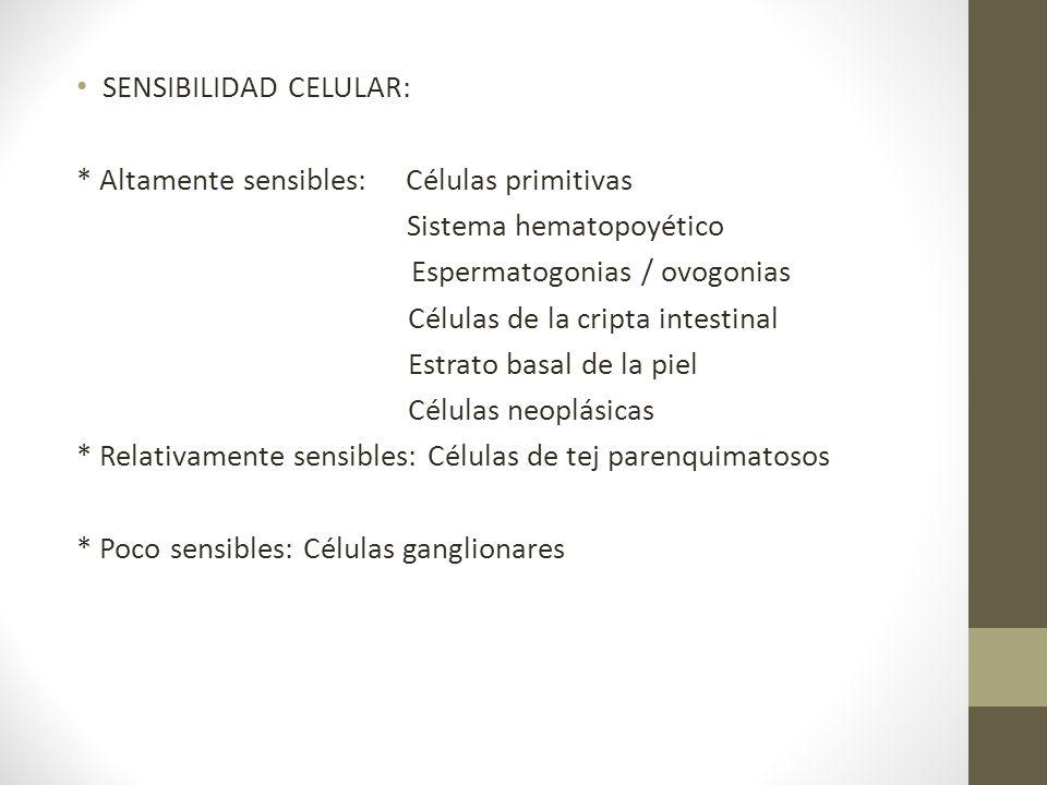 SENSIBILIDAD CELULAR: * Altamente sensibles: Células primitivas Sistema hematopoyético Espermatogonias / ovogonias Células de la cripta intestinal Est