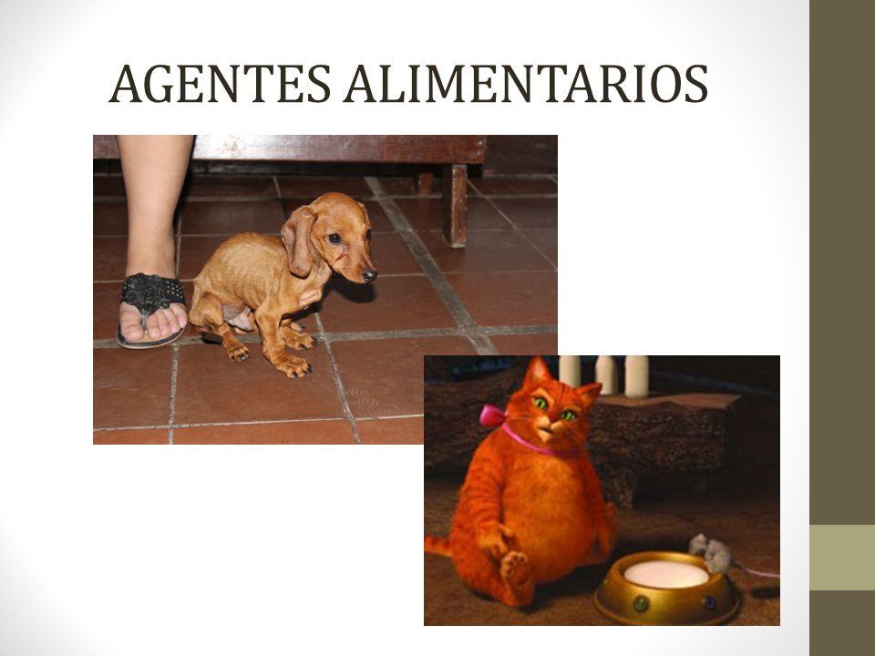 AGENTES ALIMENTARIOS