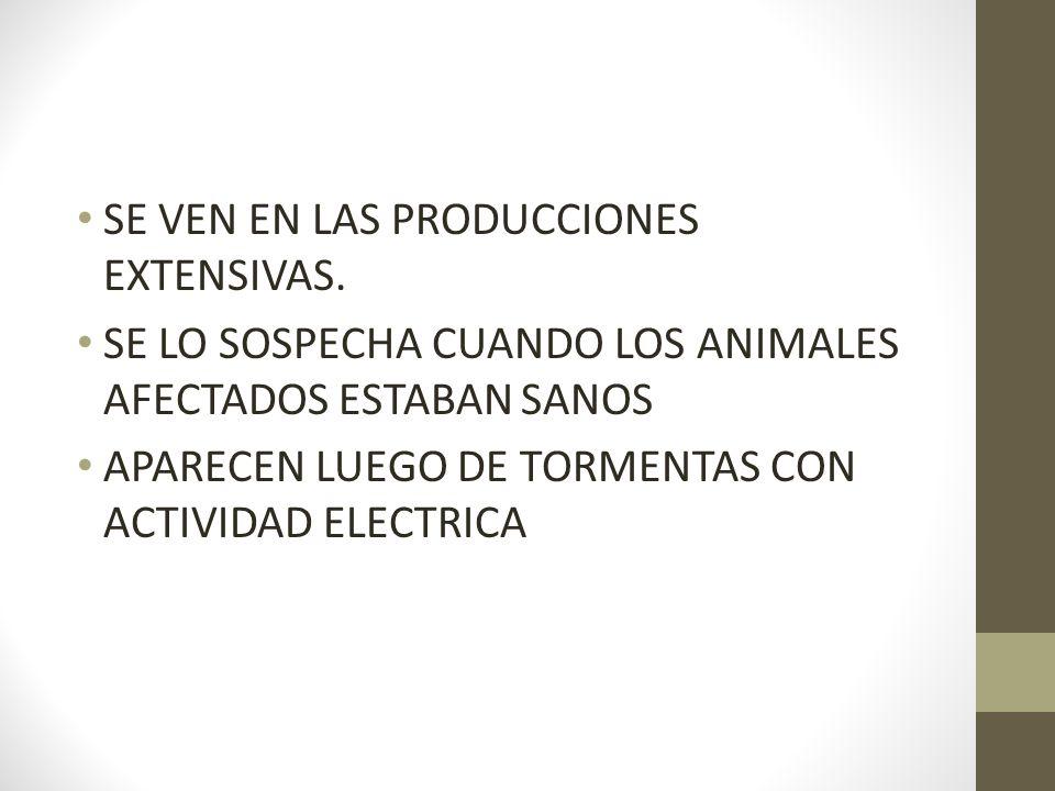 SE VEN EN LAS PRODUCCIONES EXTENSIVAS. SE LO SOSPECHA CUANDO LOS ANIMALES AFECTADOS ESTABAN SANOS APARECEN LUEGO DE TORMENTAS CON ACTIVIDAD ELECTRICA