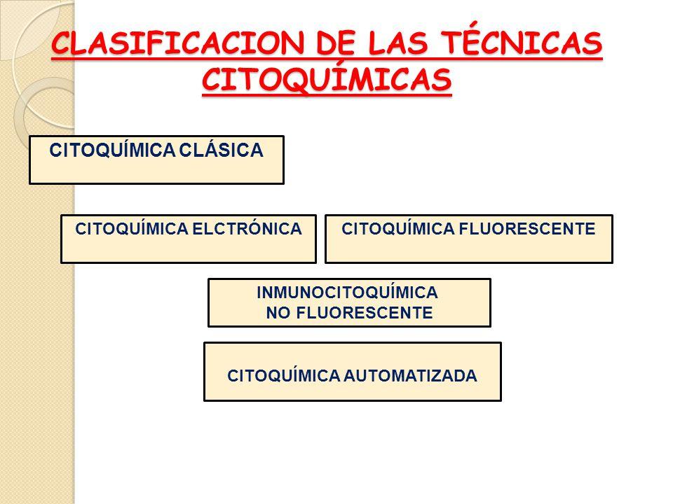 CLASIFICACION DE LAS TÉCNICAS CITOQUÍMICAS CITOQUÍMICA CLÁSICA INMUNOCITOQUÍMICA NO FLUORESCENTE CITOQUÍMICA FLUORESCENTECITOQUÍMICA ELCTRÓNICA CITOQU
