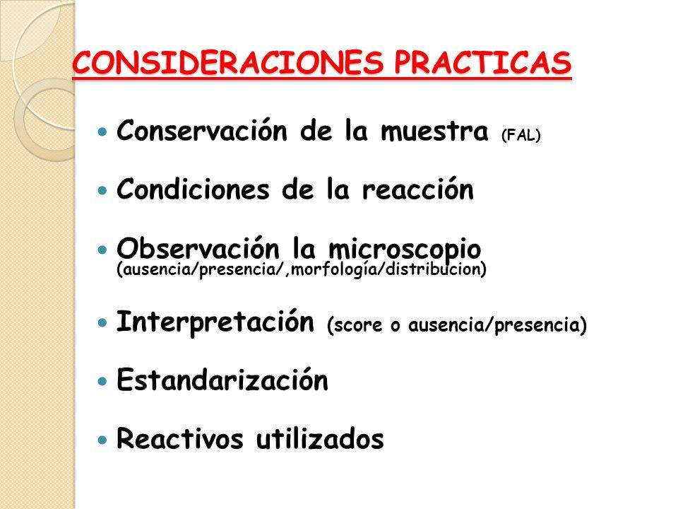CONSIDERACIONES PRACTICAS Conservación de la muestra (FAL) Condiciones de la reacción Observación la microscopio (ausencia/presencia/,morfología/distr