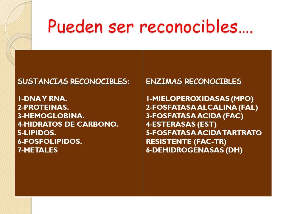 Pueden ser reconocibles…. SUSTANCIAS RECONOCIBLES: 1-DNA Y RNA. 2-PROTEINAS. 3-HEMOGLOBINA. 4-HIDRATOS DE CARBONO. 5-LIPIDOS. 6-FOSFOLIPIDOS. 7-METALE