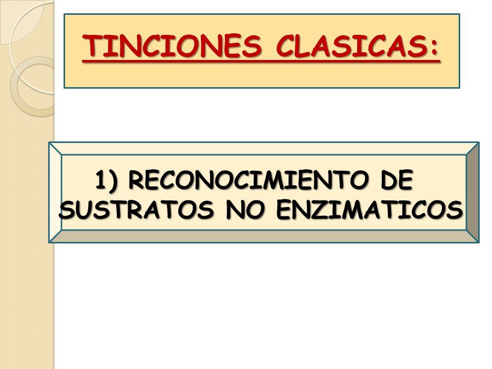 TINCIONES CLASICAS: 1) RECONOCIMIENTO DE SUSTRATOS NO ENZIMATICOS