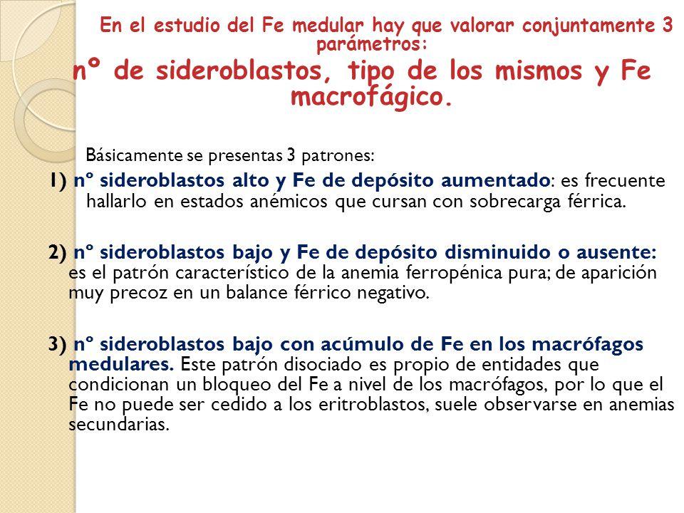 En el estudio del Fe medular hay que valorar conjuntamente 3 parámetros: nº de sideroblastos, tipo de los mismos y Fe macrofágico. Básicamente se pres