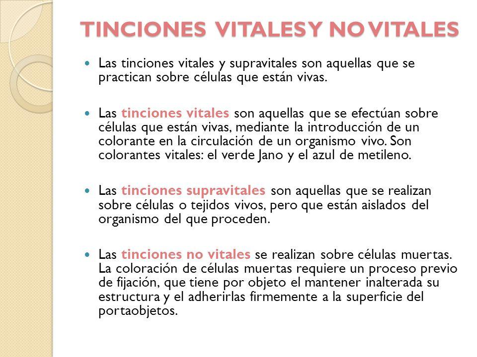 TINCIONES VITALES Y NO VITALES Las tinciones vitales y supravitales son aquellas que se practican sobre células que están vivas. Las tinciones vitales