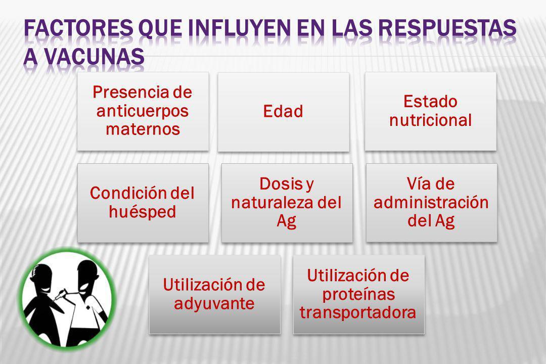 Presencia de anticuerpos maternos Edad Estado nutricional Condición del huésped Dosis y naturaleza del Ag Vía de administración del Ag Utilización de adyuvante Utilización de proteínas transportadora