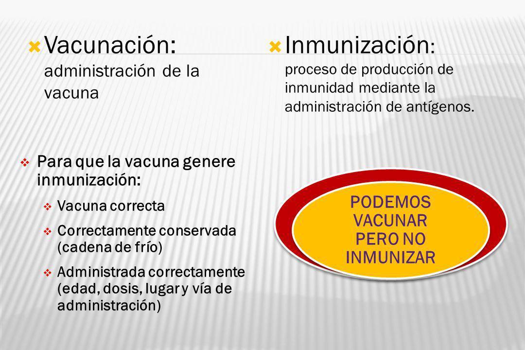 Vacunación: administración de la vacuna Inmunización : proceso de producción de inmunidad mediante la administración de antígenos. Para que la vacuna