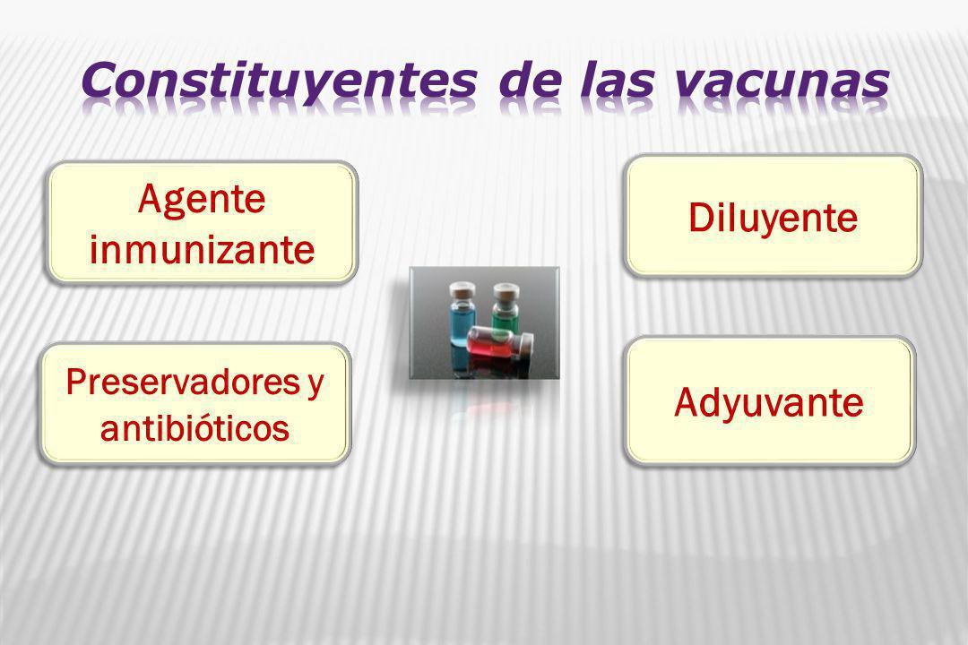 Agente inmunizante Diluyente Preservadores y antibióticos Adyuvante