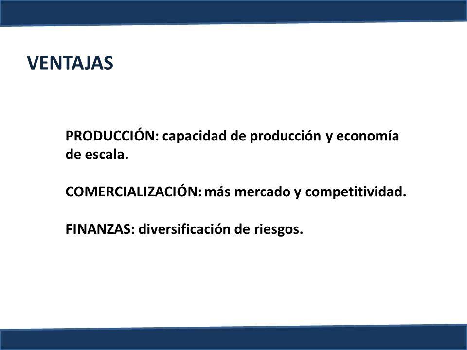 VENTAJAS PRODUCCIÓN: capacidad de producción y economía de escala. COMERCIALIZACIÓN: más mercado y competitividad. FINANZAS: diversificación de riesgo