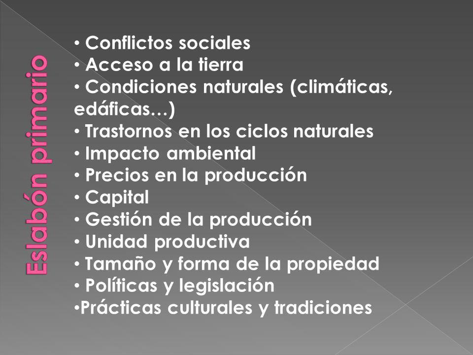 Conflictos sociales Acceso a la tierra Condiciones naturales (climáticas, edáficas…) Trastornos en los ciclos naturales Impacto ambiental Precios en la producción Capital Gestión de la producción Unidad productiva Tamaño y forma de la propiedad Políticas y legislación Prácticas culturales y tradiciones