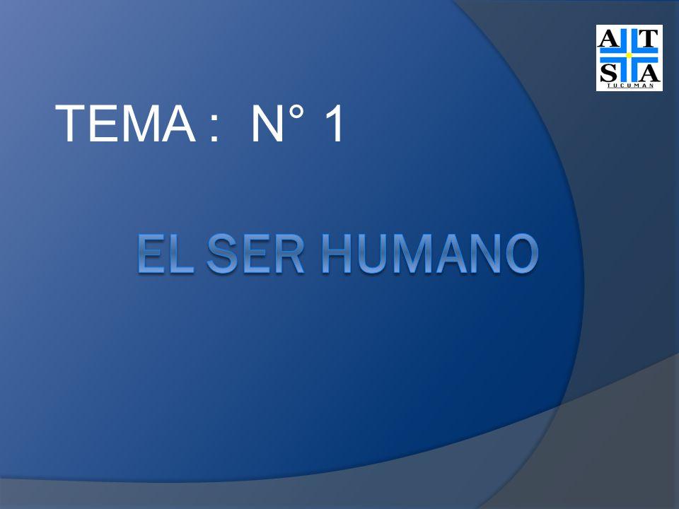 TEMA : N° 1