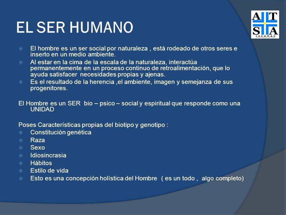EL SER HUMANO El hombre es un ser social por naturaleza, está rodeado de otros seres e inserto en un medio ambiente. Al estar en la cima de la escala