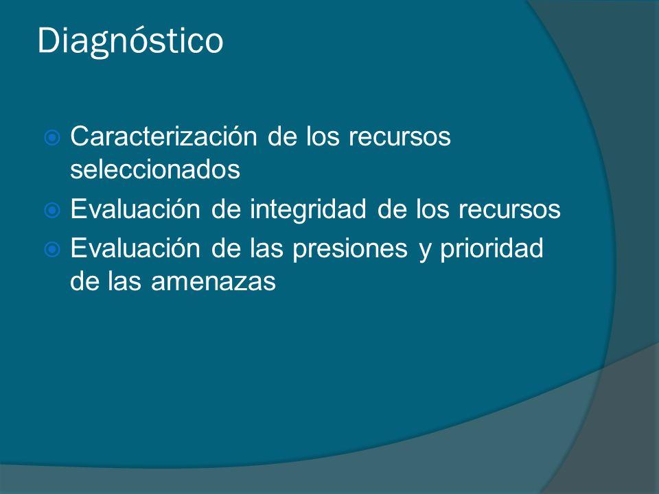 Diagnóstico Caracterización de los recursos seleccionados Evaluación de integridad de los recursos Evaluación de las presiones y prioridad de las amen