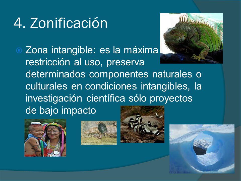 4. Zonificación Zona intangible: es la máxima restricción al uso, preserva determinados componentes naturales o culturales en condiciones intangibles,
