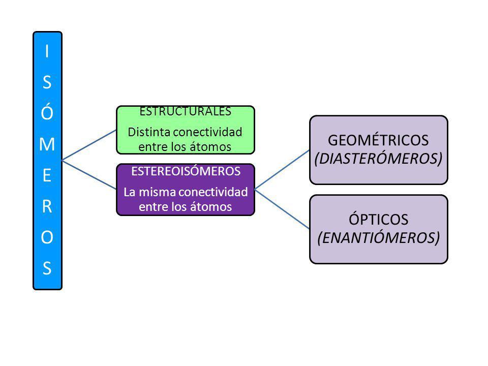 ISÓMEROSISÓMEROS ESTRUCTURALES Distinta conectividad entre los átomos ESTEREOISÓMEROS La misma conectividad entre los átomos GEOMÉTRICOS (DIASTERÓMERO