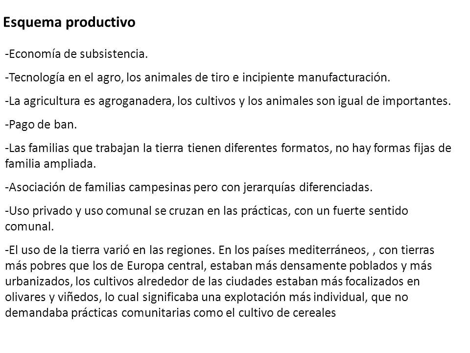 Esquema productivo -Economía de subsistencia.