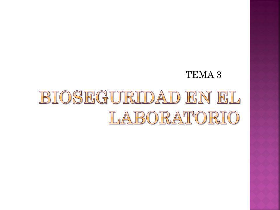 Fichas internacionales de seguridad química: www.mtas.es/insht/ipcsnspn/spanish.
