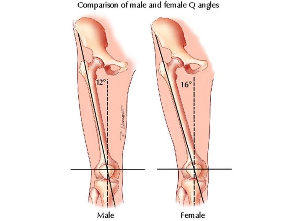 En resumen: Para llevar a cabo un programa de rehabilitación de rodilla eficaz, el terapeuta deportivo debe entender a fondo la naturaleza de la lesión, la función de las estructuras dañadas y la técnica de reparación o reconstrucción.
