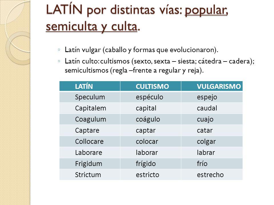 Otros elementos constitutivos LENGUAS PRERROMANAS.