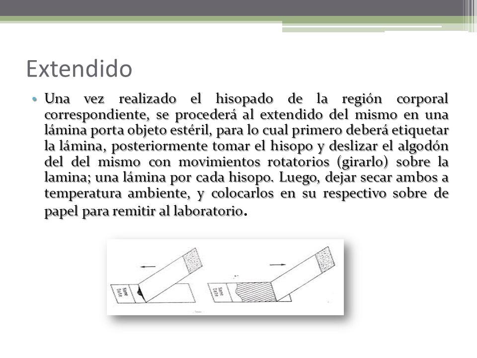 3. Región Anal Deben obtenerse dos muestras iniciales de la zona perianal, si la piel perianal está húmeda, la mancha debe ser recogida con gasas esté