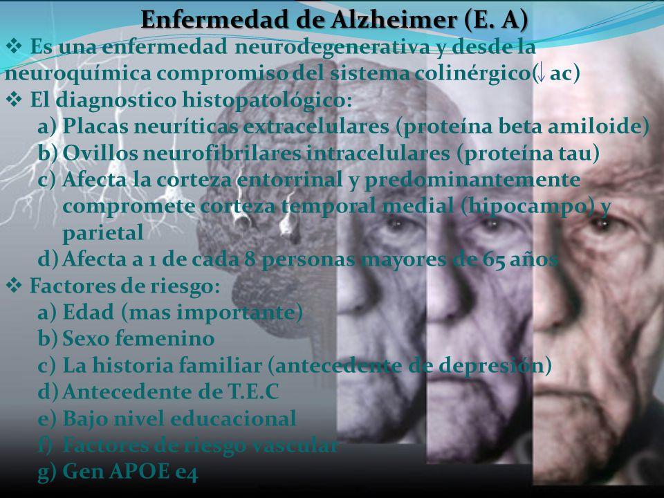 Enfermedad de Alzheimer (E. A) Es una enfermedad neurodegenerativa y desde la neuroquímica compromiso del sistema colinérgico( ac) El diagnostico hist