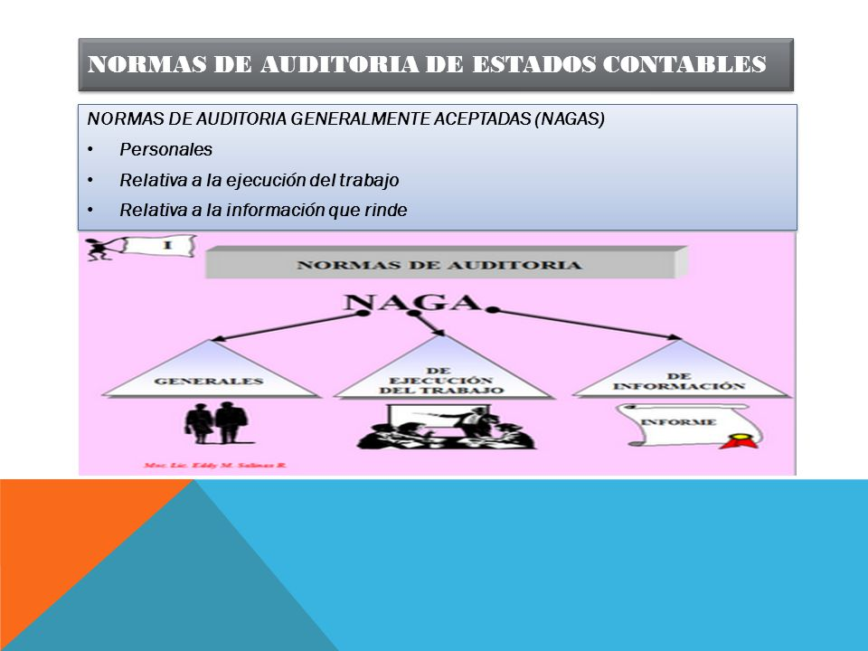 NORMAS DE AUDITORIA DE ESTADOS CONTABLES