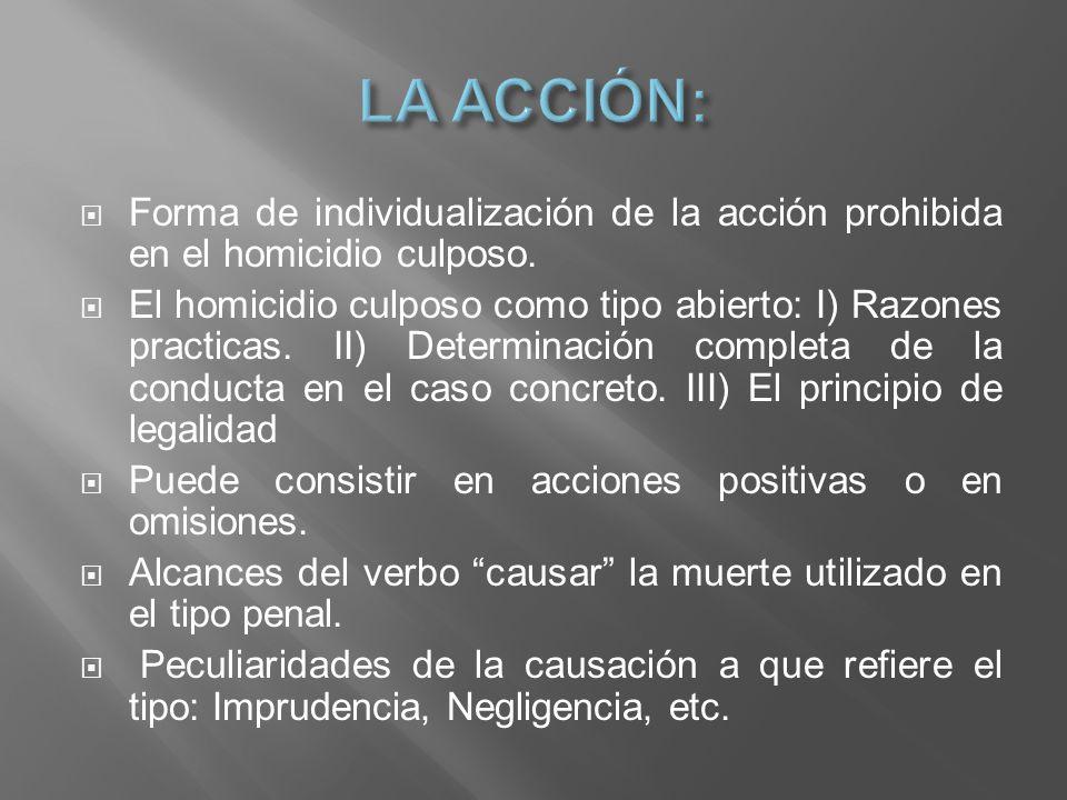 Forma de individualización de la acción prohibida en el homicidio culposo. El homicidio culposo como tipo abierto: I) Razones practicas. II) Determina
