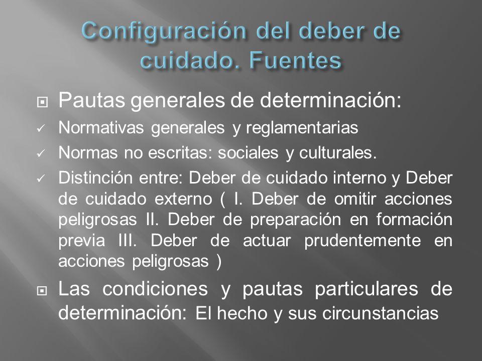 Pautas generales de determinación: Normativas generales y reglamentarias Normas no escritas: sociales y culturales. Distinción entre: Deber de cuidado