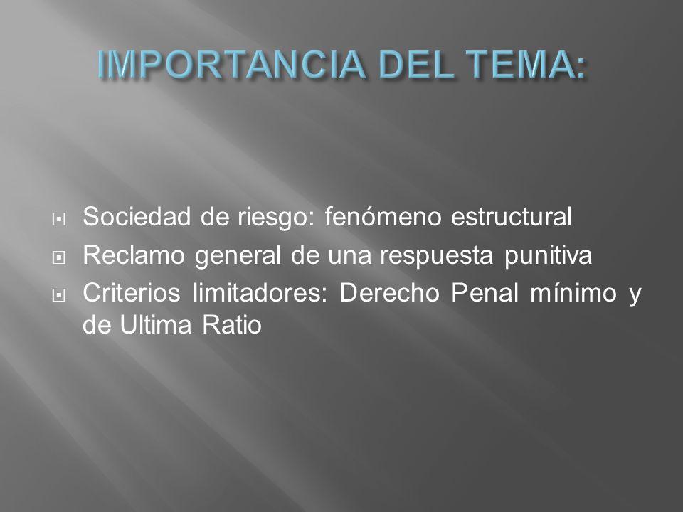 Sociedad de riesgo: fenómeno estructural Reclamo general de una respuesta punitiva Criterios limitadores: Derecho Penal mínimo y de Ultima Ratio