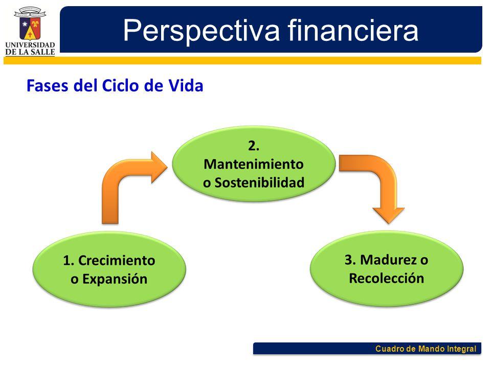 Cuadro de Mando Integral Perspectiva financiera Fases del Ciclo de Vida