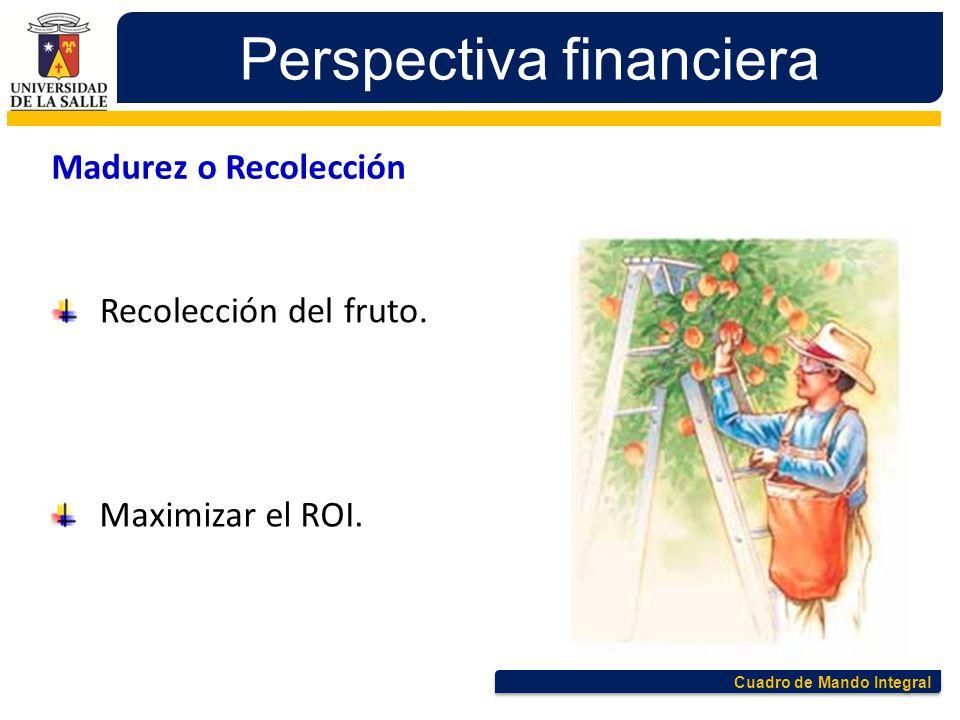Cuadro de Mando Integral Perspectiva financiera Madurez o Recolección Recolección del fruto. Maximizar el ROI.