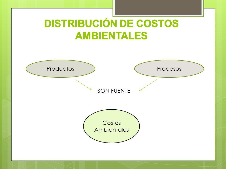 Costos Ambientales ProcesosProductos SON FUENTE