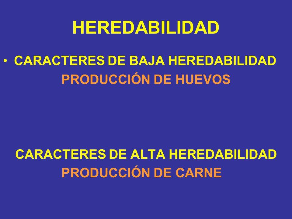 HEREDABILIDAD CARACTERES DE BAJA HEREDABILIDAD PRODUCCIÓN DE HUEVOS CARACTERES DE ALTA HEREDABILIDAD PRODUCCIÓN DE CARNE