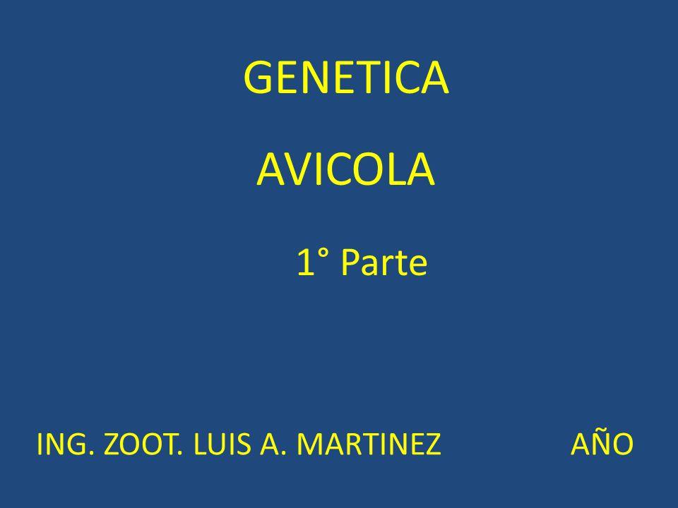 GENETICA AVICOLA ING. ZOOT. LUIS A. MARTINEZ AÑO 1° Parte