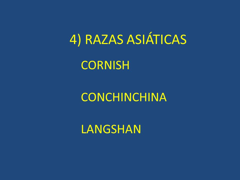 1) RAZAS NORTEAMERICANAS NEW HAMPSHIRE