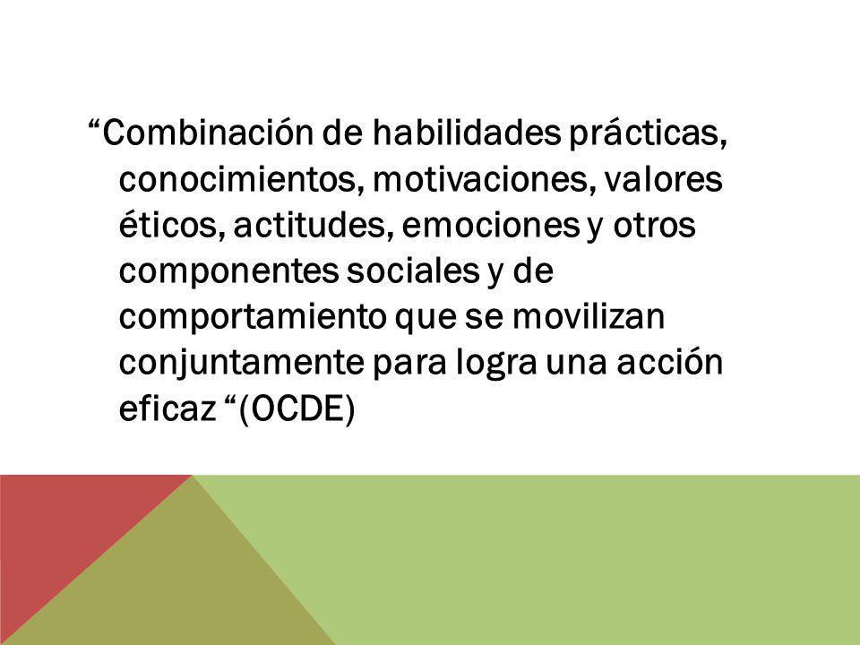 Combinación de habilidades prácticas, conocimientos, motivaciones, valores éticos, actitudes, emociones y otros componentes sociales y de comportamiento que se movilizan conjuntamente para logra una acción eficaz (OCDE)