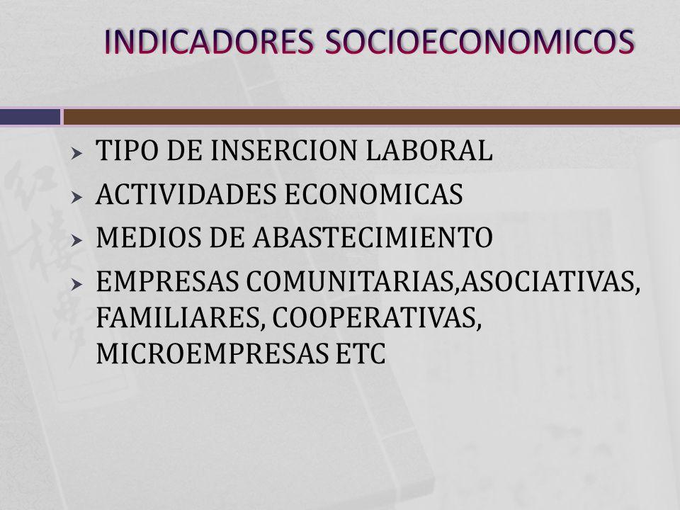 TIPO DE INSERCION LABORAL ACTIVIDADES ECONOMICAS MEDIOS DE ABASTECIMIENTO EMPRESAS COMUNITARIAS,ASOCIATIVAS, FAMILIARES, COOPERATIVAS, MICROEMPRESAS ETC