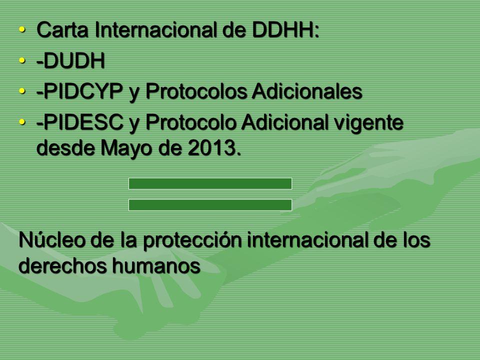 Carta Internacional de DDHH:Carta Internacional de DDHH: -DUDH-DUDH -PIDCYP y Protocolos Adicionales-PIDCYP y Protocolos Adicionales -PIDESC y Protoco