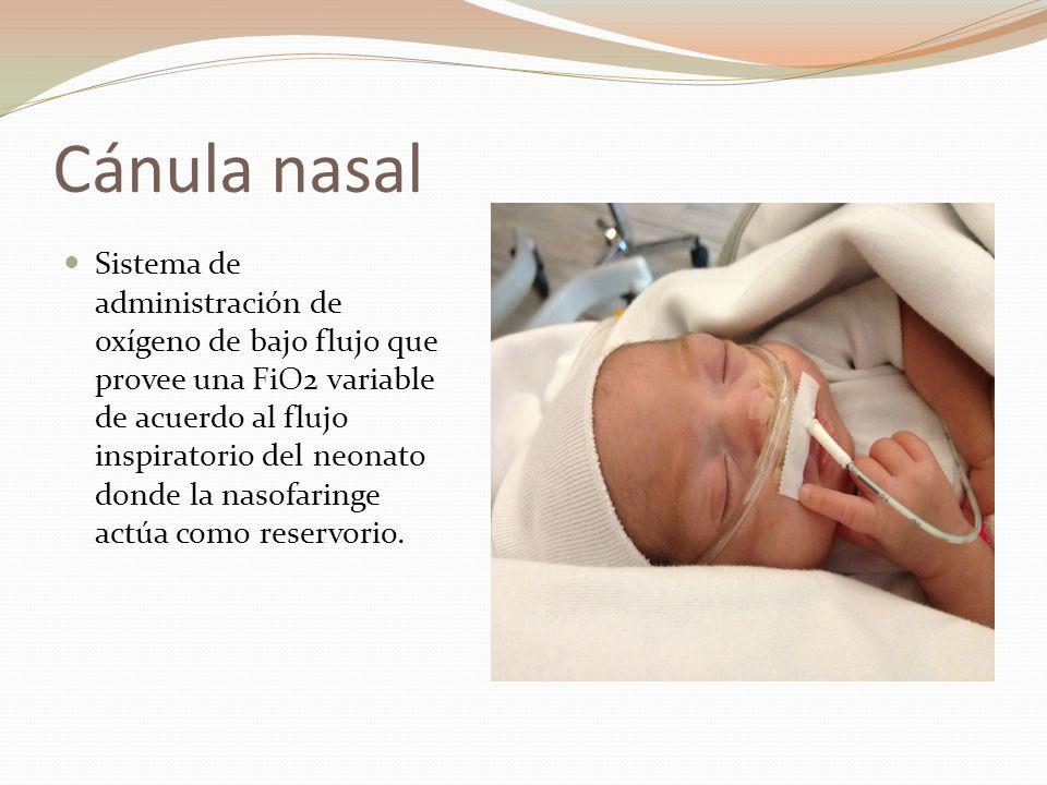 Cánula nasal Sistema de administración de oxígeno de bajo flujo que provee una FiO2 variable de acuerdo al flujo inspiratorio del neonato donde la nas