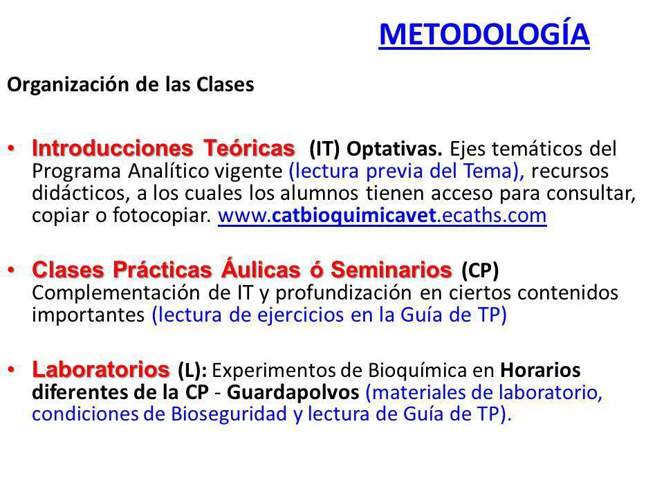 Organización de las Clases Introducciones TeóricasIntroducciones Teóricas (IT) Optativas. Ejes temáticos del Programa Analítico vigente (lectura previ