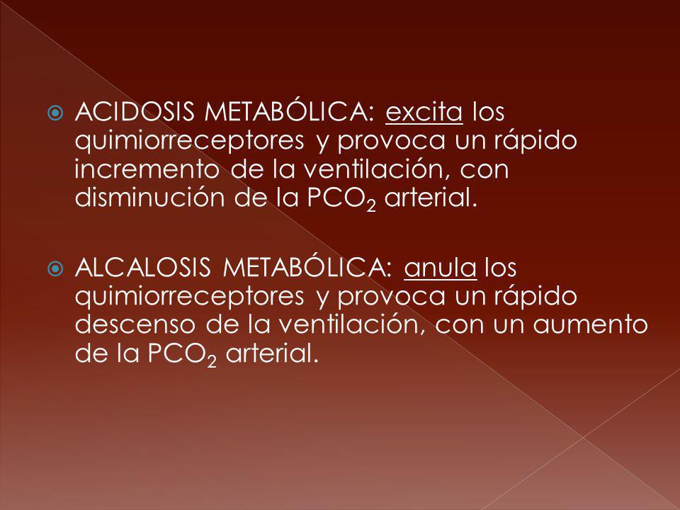 ACIDOSIS METABÓLICA: excita los quimiorreceptores y provoca un rápido incremento de la ventilación, con disminución de la PCO 2 arterial. ALCALOSIS ME